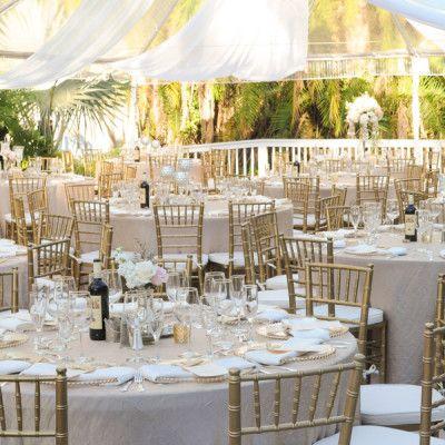 Chiavari chair hire chivary banquet chair rental wedding decorations extras junglespirit Gallery